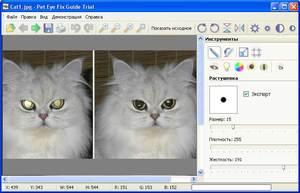 Обзор программы Pet Eye Fix Guide