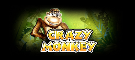 Автомат crazy fruit ninja attack apk